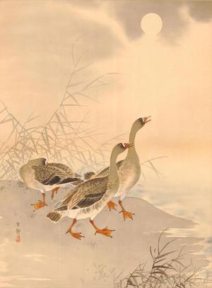 Shoson Ohara: Three Geese and Sun (1) - Ohmi Gallery