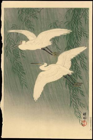 Shoson Ohara: White Herons and Willow - 柳に白鷺 - Ohmi Gallery