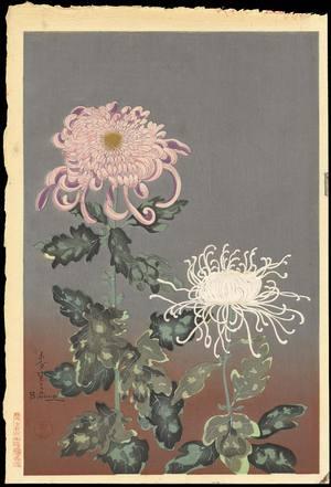 大野麦風: Chrysanthemum (Red and White) - Ohmi Gallery