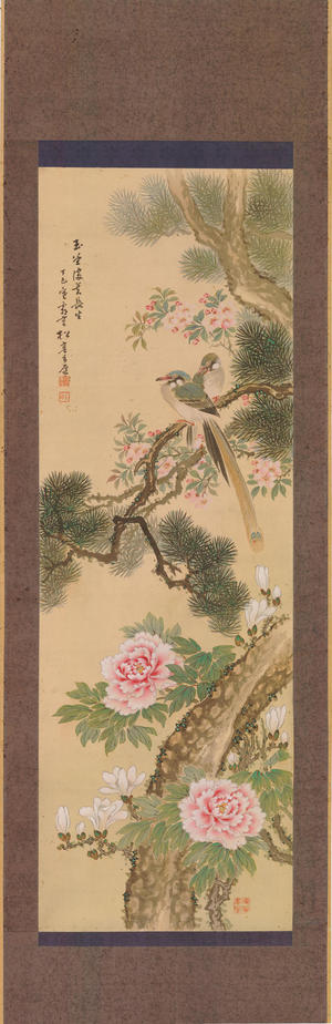 Watanabe Shotei: Cotton Rose in Full Bloom for Long Life - Ohmi Gallery