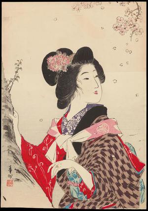 Suzuki, Kason: Sakura (Cherry Blossom) - 桜 - Ohmi Gallery