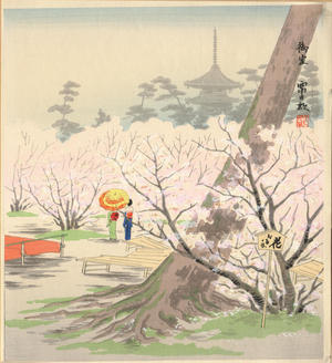 徳力富吉郎: The Cherry Blossoms of Omuro at Kyoto in Spring - Ohmi Gallery