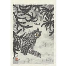 Aoyama, Masaharu: Owl (1) - Ohmi Gallery