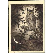 Aoyama, Masaharu: Owl and Moon (1) - Ohmi Gallery