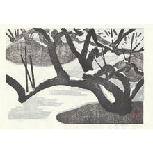 Aoyama, Masaharu: White Plum - 白梅 - Ohmi Gallery