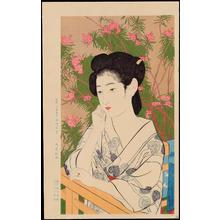 Hashiguchi Goyo: Hot Spring Hotel - 温泉宿 - Ohmi Gallery