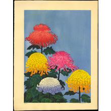 Hayashi, Waichi: Large Chrysanthemums - 大菊 - Ohmi Gallery