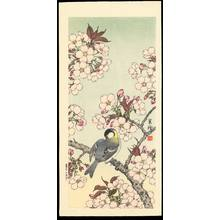 Jo 1930s): Bird on Branch with Pink Blossoms - Ohmi Gallery