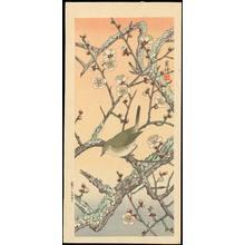 Jo 1930s): Bird on Plum Branch - Ohmi Gallery