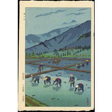 笠松紫浪: Rice Planting - 田うえ - Ohmi Gallery