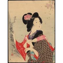Suzuki, Kason: Sakura (Cherry Blossom) - 桜 (1) - Ohmi Gallery