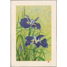 Katsuda, Yukio: No 205 Iris - 花菖蒲 - Ohmi Gallery