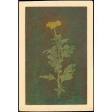 Katsuda, Yukio: No. 34 - Flower (1) - Ohmi Gallery