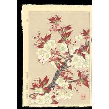 Kawarazaki, Shodo: Scene No. 23 (1) - Ohmi Gallery