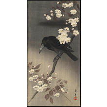今尾景年: Crow and Cherry Blossoms - Ohmi Gallery