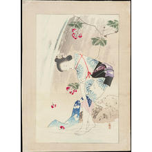 Mishima Shoso: Waterfall Spray - 瀧しぶき - Ohmi Gallery