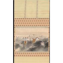 Nakazawa Ikkyo: Sparrows in Bamboo - 竹雀図 - Ohmi Gallery