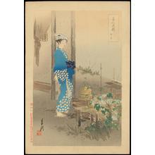 Ogata Gekko: Moring Glories - Ohmi Gallery