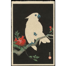 Shoson Ohara: Cockatoo and Pomegranate - Ohmi Gallery