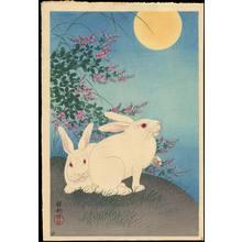 Shoson Ohara: Two Rabbits - Ohmi Gallery