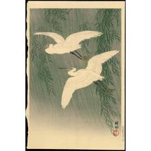 Shoson Ohara: White Herons and Willow - 柳に白鷺 - Ohmi Gallery