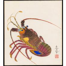 Bakufu Ohno: Spiny Lobster - イセエビ - Ohmi Gallery