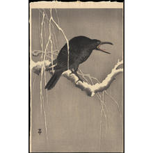 Shoson Ohara: Cawing Crow - Ohmi Gallery