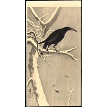 Shoson Ohara: Crow on snowy bough - Ohmi Gallery