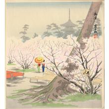 Tokuriki Tomikichiro: The Cherry Blossoms of Omuro at Kyoto in Spring - Ohmi Gallery
