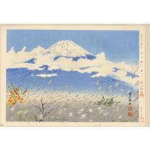 Tokuriki Tomikichiro: No. 10- Fuji from Akinono - 秋の野の富士 - Ohmi Gallery