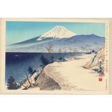 Tokuriki Tomikichiro: No. 11- Izu Eri Coast - 伊豆江梨海岸 - Ohmi Gallery
