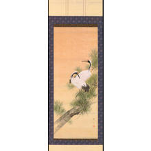 Watanabe Seitei: Two cranes in pine tree (1) - Ohmi Gallery