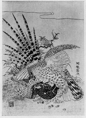 湖龍斎: (山鳥と鷺) - Ritsumeikan University