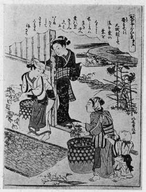 Kitao Shigemasa: 「かいこやしない草第五」 - Ritsumeikan University