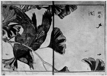 Kitao Shigemasa: (花鳥図絵) - Ritsumeikan University