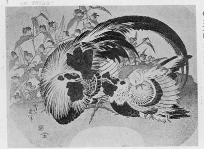 葛飾北斎: 「鶏」 - 立命館大学