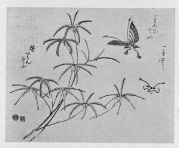 Utagawa Kuniyoshi: 「笹りんどう」 - Ritsumeikan University