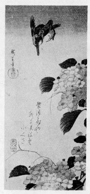 歌川広重: (紫陽花に川蝉) - 立命館大学