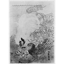 湖龍斎: (鶏) - 立命館大学