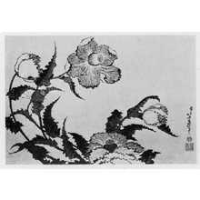 Katsushika Hokusai: (罌栗) - Ritsumeikan University