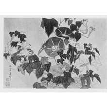 Katsushika Hokusai: (朝顔) - Ritsumeikan University