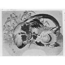 Katsushika Hokusai: 「鶏」 - Ritsumeikan University