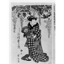 Utagawa Kuniyasu: 「おた川 瀬川菊之丞」 - Ritsumeikan University