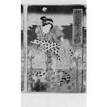 栄泉: 「杜若紫再咲 表紙絵 右」 - Ritsumeikan University