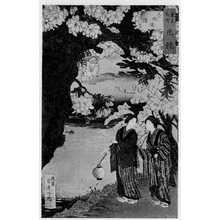 Adachi Ginko: 「東京名所花競」 - Ritsumeikan University
