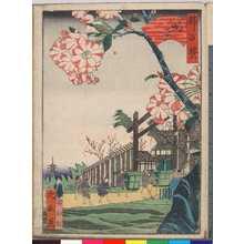 Utagawa Yoshitoyo: 「都百景」「島原」 - Ritsumeikan University