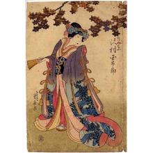 重春: 「くづの葉 沢村玉太郎」 - 立命館大学