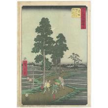 Utagawa Hiroshige: Akasaka - Robyn Buntin of Honolulu