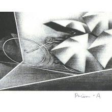 Kuroda Shigeki: Prism - A - Robyn Buntin of Honolulu