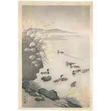Ohara Koson: Mallards in Coastal Scene - Robyn Buntin of Honolulu